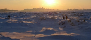 Badeaux admirant le coucher de soleil sur Québec (vue de l'île d'Orléans)
