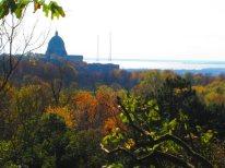 Vue sur la canopée du Mont-Royal et l'Oratoire Saint-Joseph