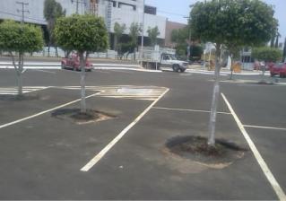 Les limites du verdissement de stationnement