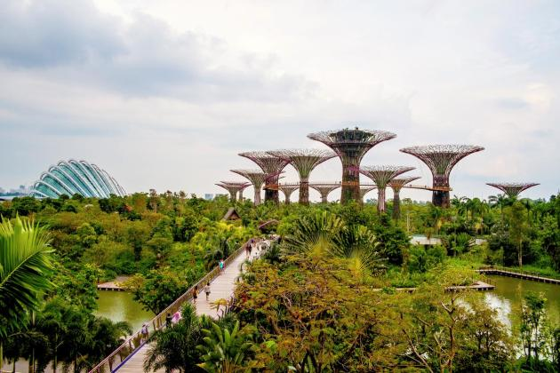 Singapour Gardens by the Bay. Credit Carlos Spottorno Panos Pictures